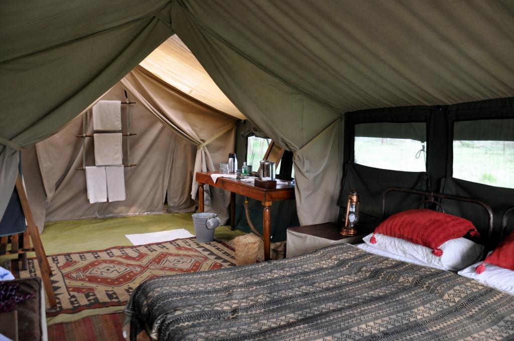 Hunderttausend Gnus und wir. Begegnungen in Tansania. tansania safari afrika  tui berlin Tansania Serengeti Migration Camp