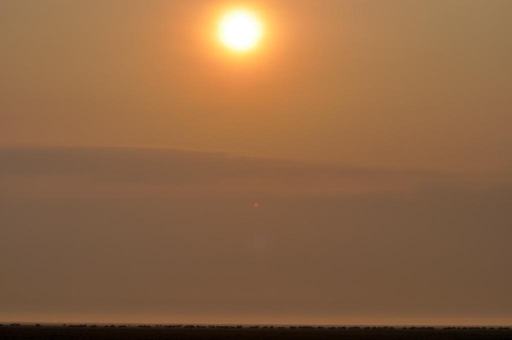 Hunderttausend Gnus und wir. Begegnungen in Tansania. tansania safari afrika  tui berlin Tansania Serengeti Migration Sonnenaufgang