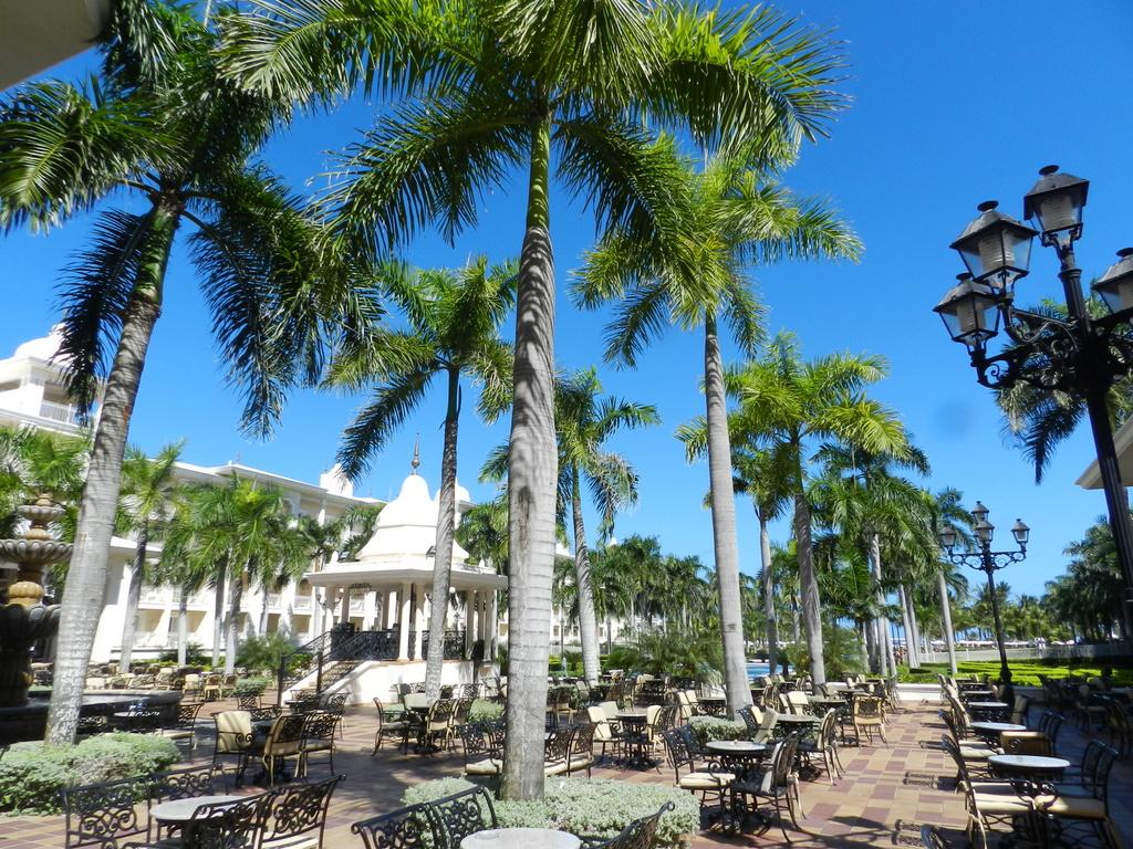 Meine Top 3 Hotelempfehlungen für die Dominikanische Republik strand sonne honeymoon 2 familie dominikanische republik karibik mittelamerika  DSCN4211