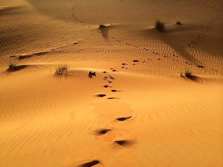 tui-berlin_Oman_Duene_Desert_Camp-752x564