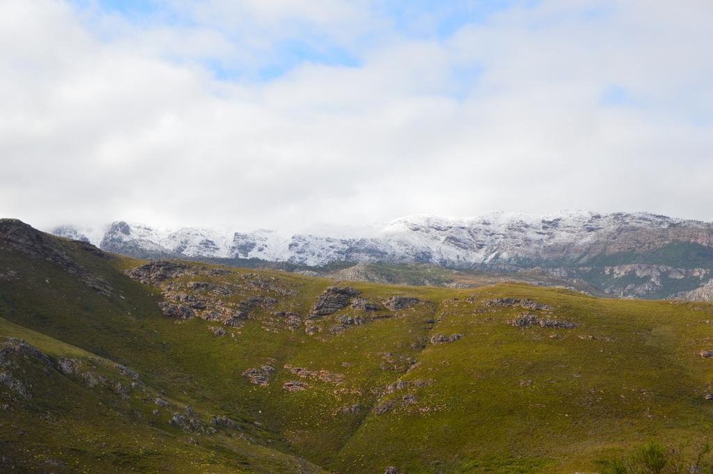 Südafrika im Juni: Pinguine, Wale und eine Blumensafari suedafrika sonne land und leute reisebericht afrika  tui berlin delaire graff estate panorama 1