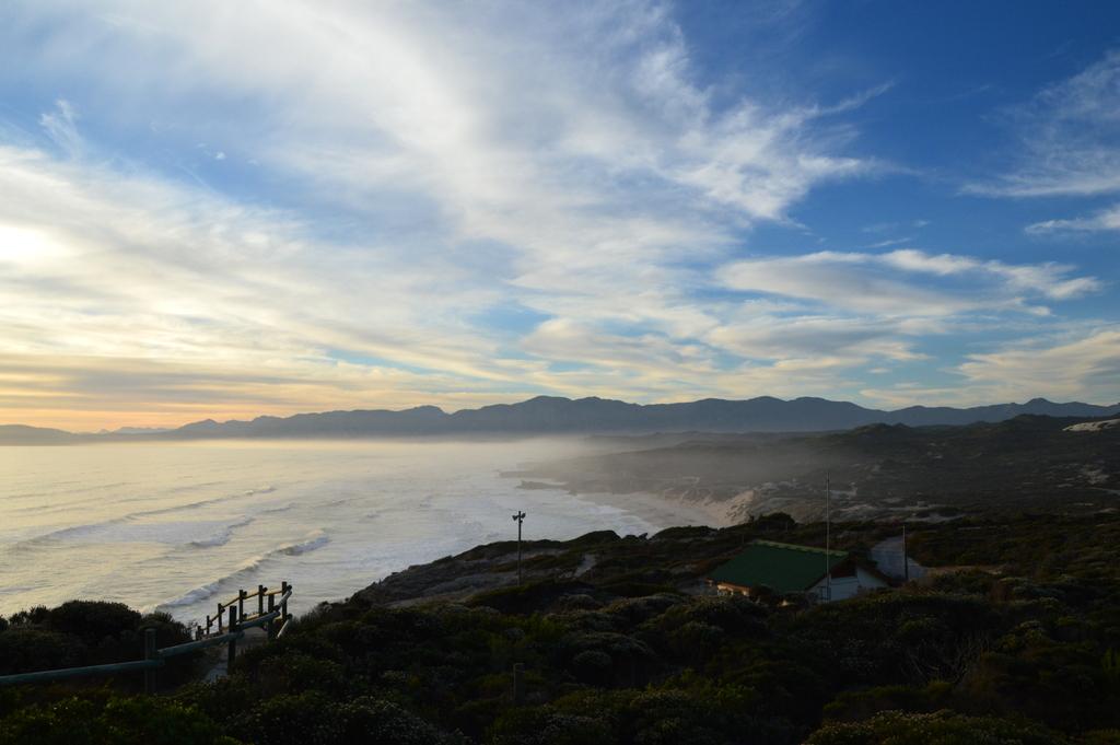Südafrika im Juni: Pinguine, Wale und eine Blumensafari suedafrika sonne land und leute reisebericht afrika  tui berlin suedafrika ausblick walker bay 1