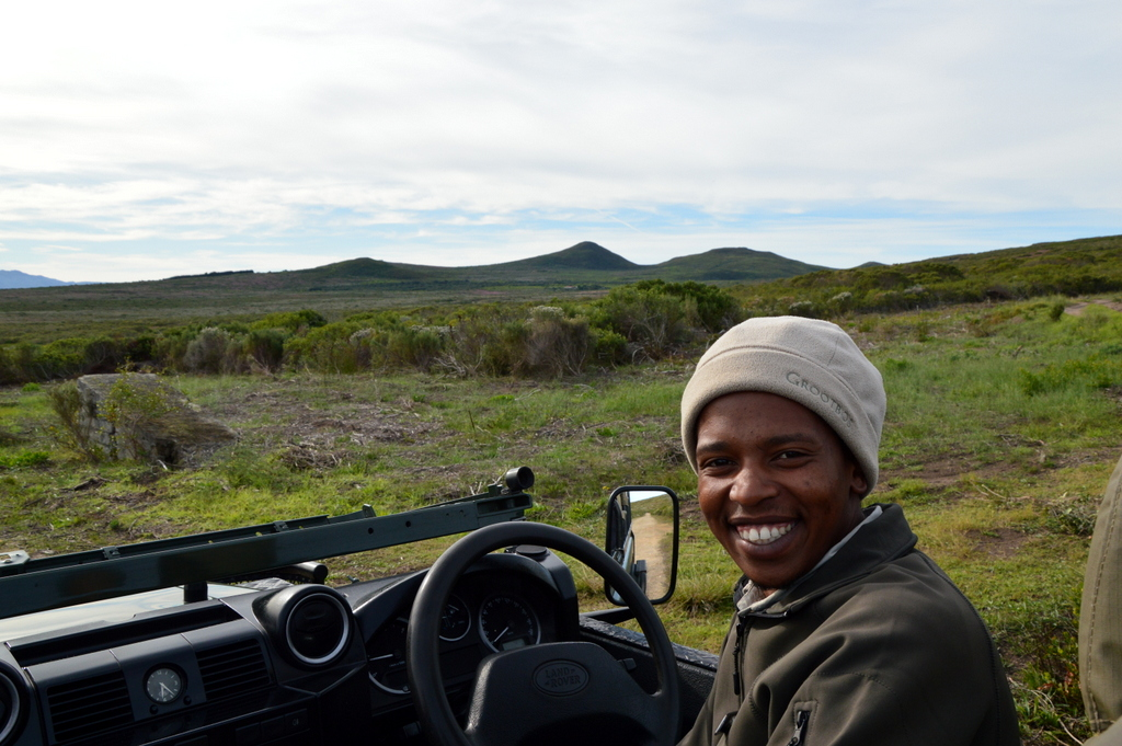 Südafrika im Juni: Pinguine, Wale und eine Blumensafari suedafrika sonne land und leute reisebericht afrika  tui berlin suedafrika blumensafari guide 1