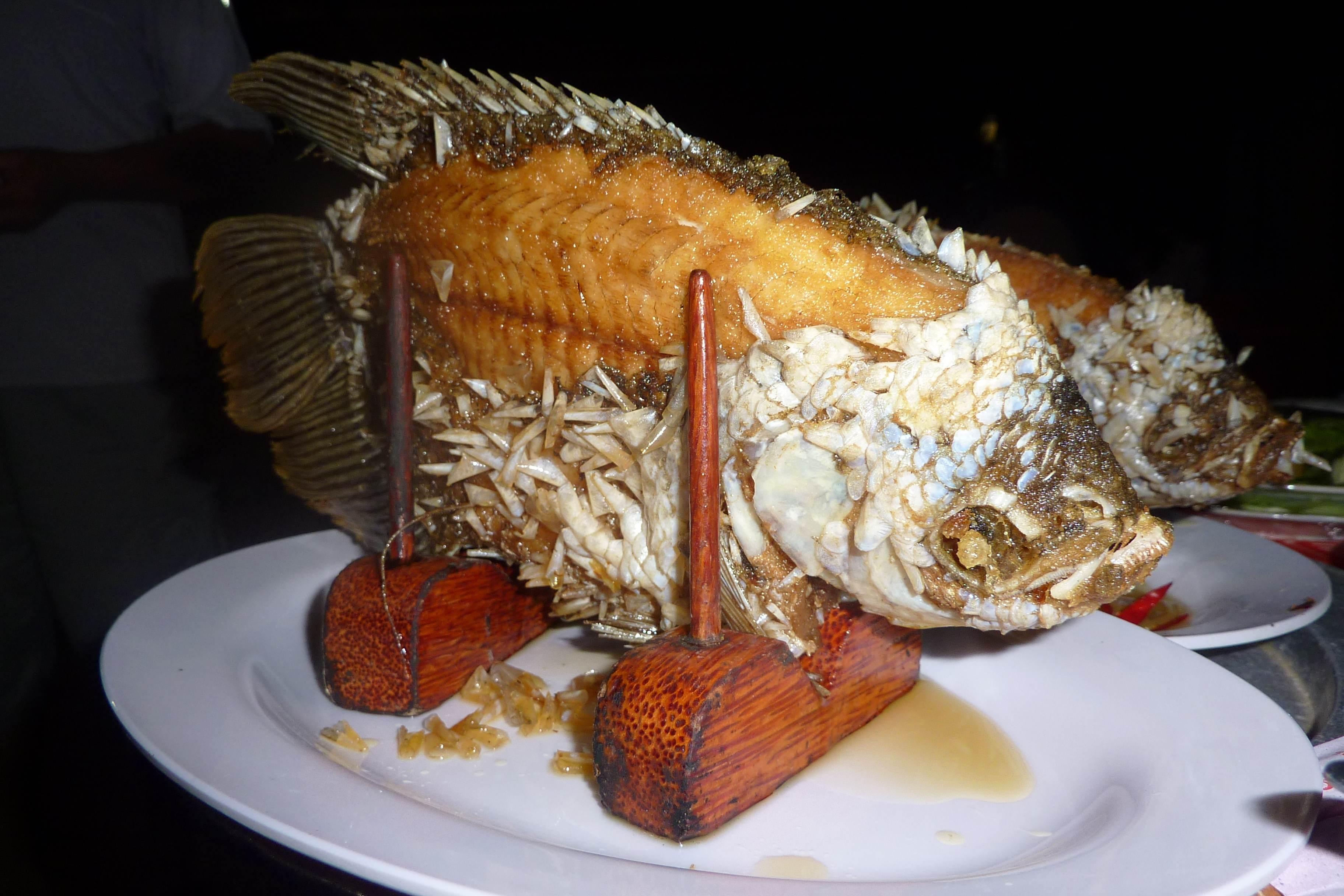 Kulinarisch unterwegs im Mekongdelta. Von Drachenaugen und Elefantenohrfischen. vietnam sonne land und leute asien  tui berlin vietnam mekong elefantenohrfisch 1