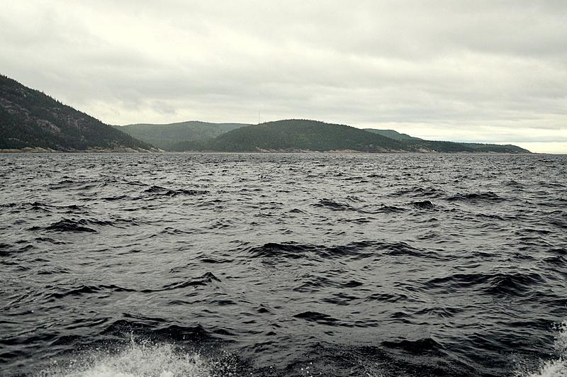 Auf Weltreise im Privatjet: Teil 2   Quebec und Tadoussac staedtereisen kanada karibik mittelamerika  tui berlin weltreise whale watching st lorenzstrom quebec