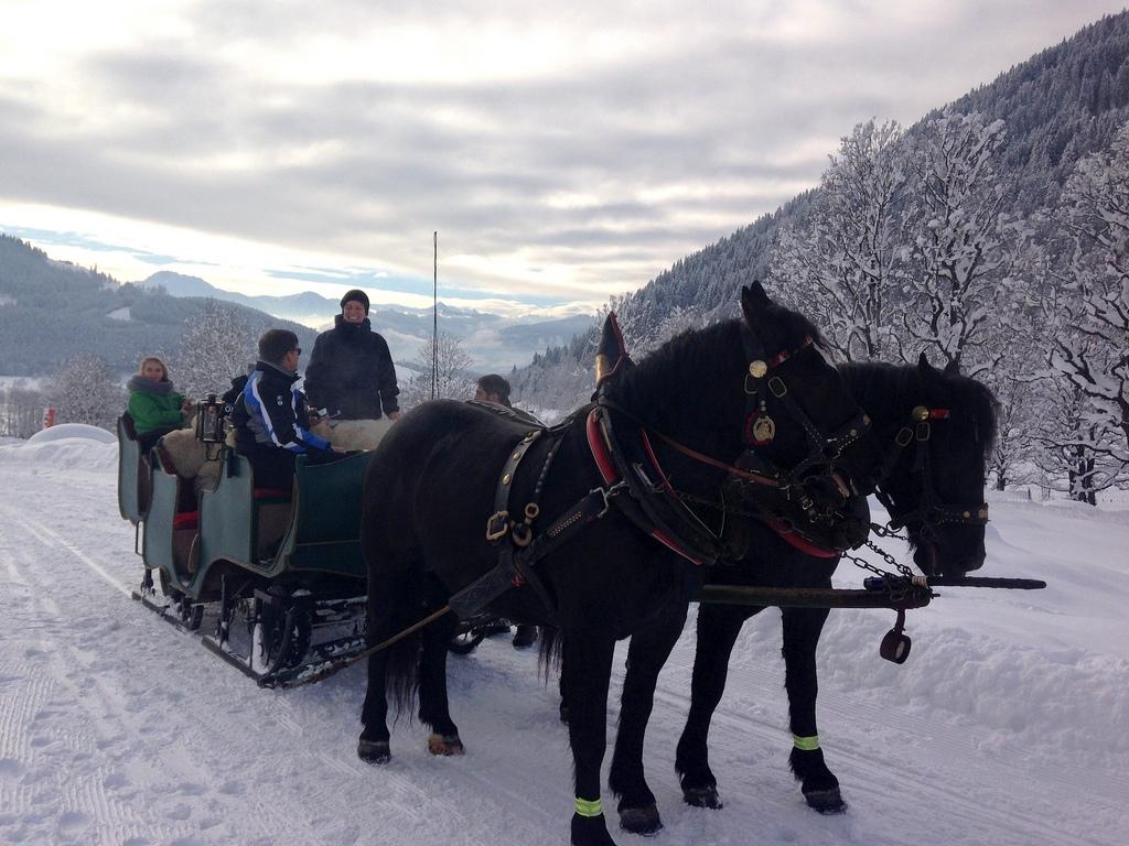 Werfenweng   Winterurlaub für Familien winterurlaub schnee oesterreich familie europa  tui berlin werfenweng pferdeschlitten tour