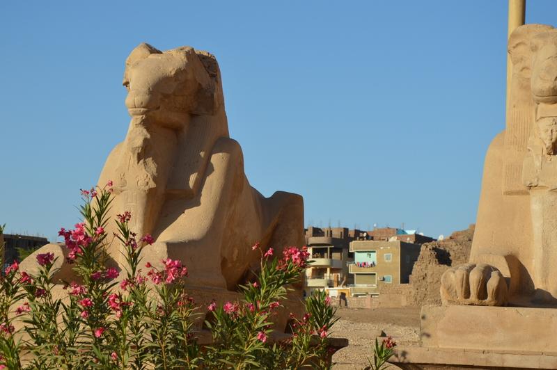 Neulich am Nil staedtereisen sonne land und leute kreuzfahrt aegypten afrika  tui berlin Aegypten Karnaktempel statue