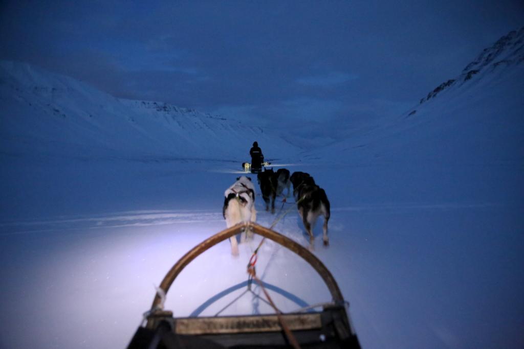 Svalbard   78° 13′ N, 15° 38′ O   Mein Abenteuer nördlich des Polarkreises. schnee land und leute norwegen europa  tui berlin Svalbard Huskyschlitten