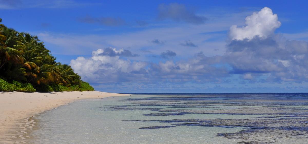 Traumtage auf den Seychellen: Desroches Island strand sonne seychellen indischer ozean orient honeymoon 2  tui berlin Seychellen Desroches langer Sandstrand