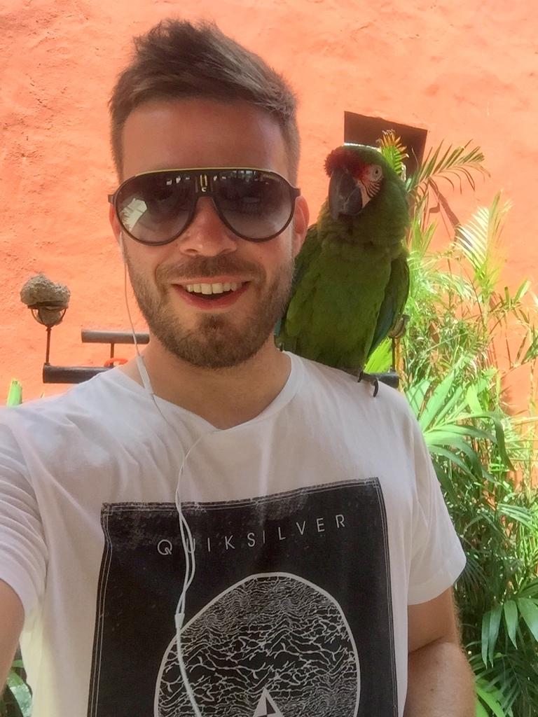 Kleine Mexiko Rundreise   Teil 3: Yucatan Halbinsel strand sonne mexiko laender karibik mittelamerika  tui berlin mexiko yucatan timo becker papagei