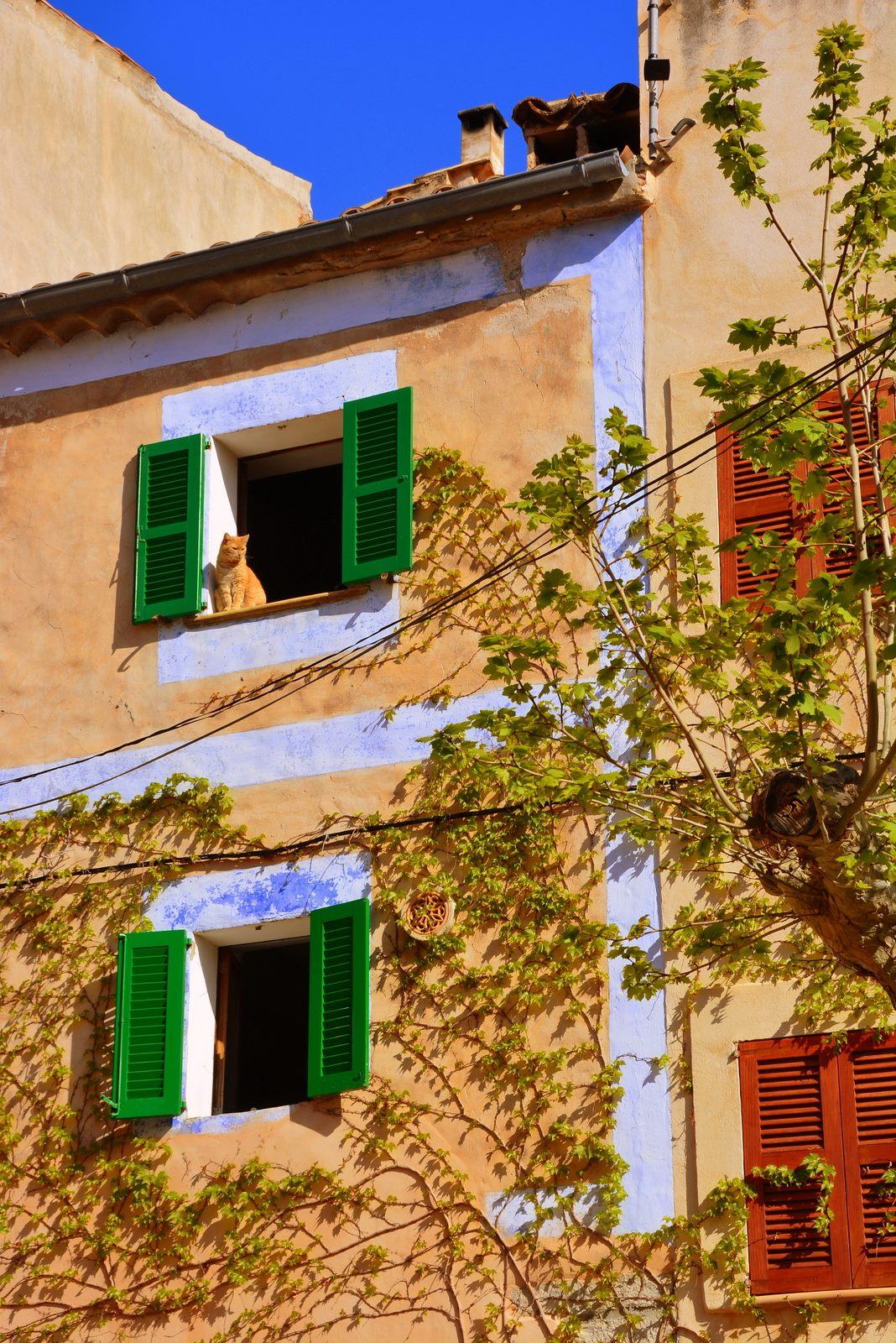Mein perfektes Mallorca Wochenende staedtereisen sonne land und leute mallorca familie europa  tui berlin mallorca estellencs banyalbufar