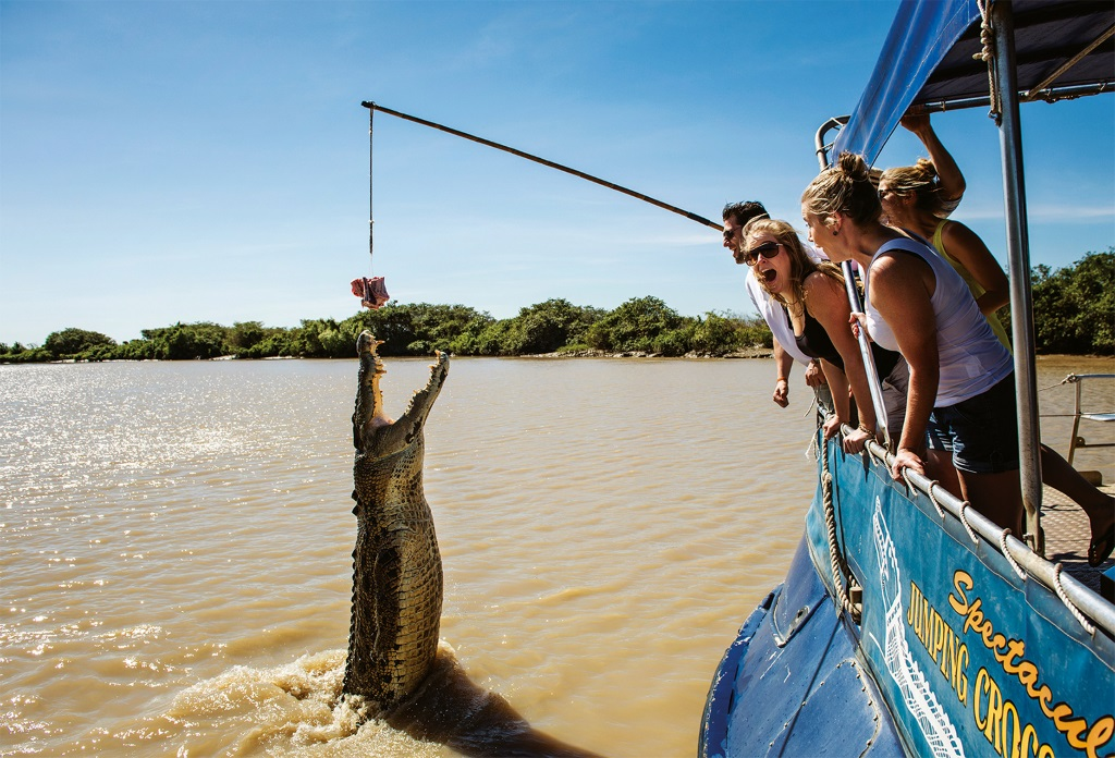 Spectacular-Jumping-Crocodile-Cruise-Adelaide River
