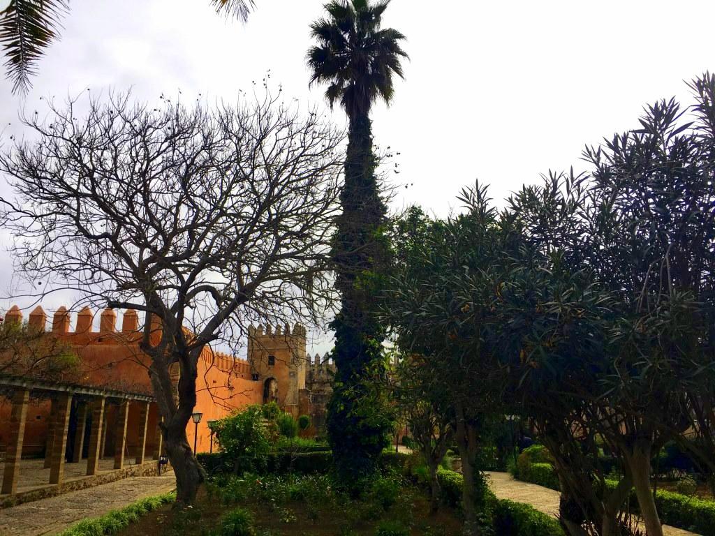 Marokkos Königsstädte   Eine Gebeco Erlebnisrundreise staedtereisen sonne land und leute marokko afrika  tui berlin marokko oudaia kasbah garten 1