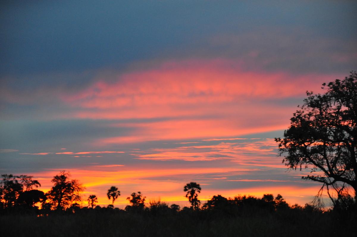 Botswana Safari und Victoriafälle: Unsere Afrika Rundreise sonne land und leute reisebericht botswana afrika  TUI Berlin Afrika Safari Botswana Sonnenuntergang