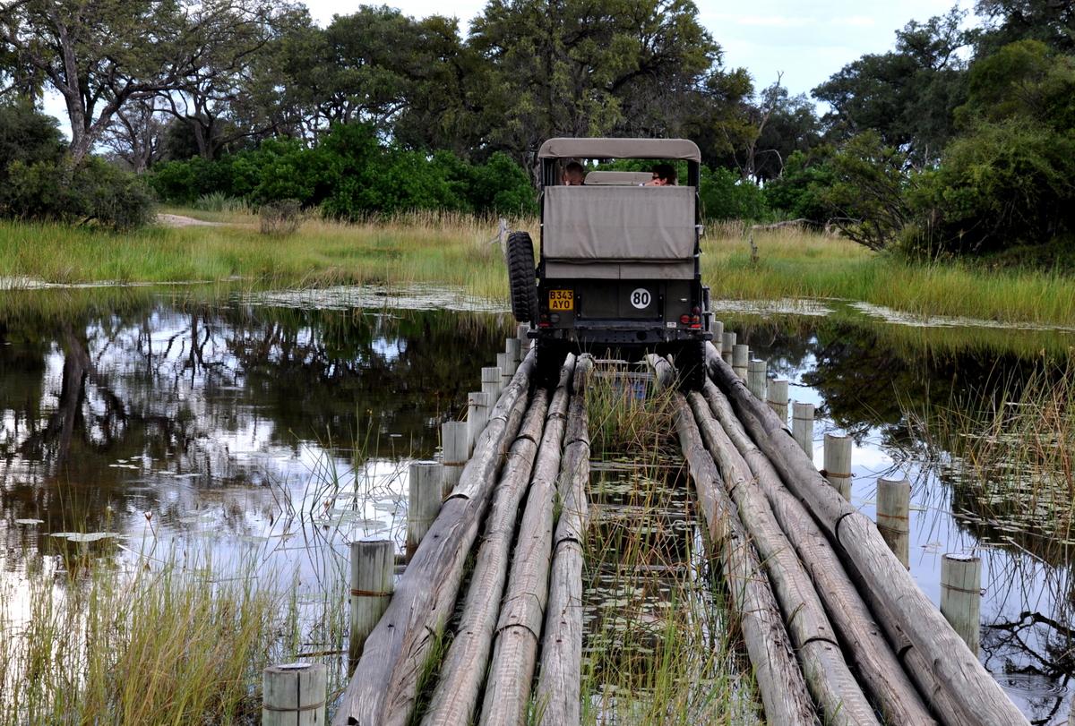 Botswana Safari und Victoriafälle: Unsere Afrika Rundreise sonne land und leute reisebericht botswana afrika  TUI Berlin Botswana Safari Autofahren im Delta