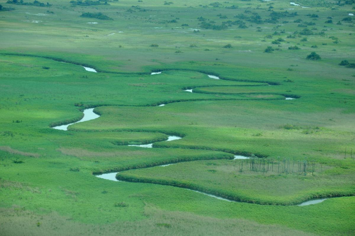 Botswana Safari und Victoriafälle: Unsere Afrika Rundreise sonne land und leute reisebericht botswana afrika  TUI Berlin Botswana Safari Delta