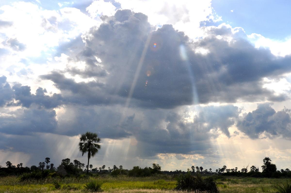 Botswana Safari und Victoriafälle: Unsere Afrika Rundreise sonne land und leute reisebericht botswana afrika  TUI Berlin Botswana Safari Himmel