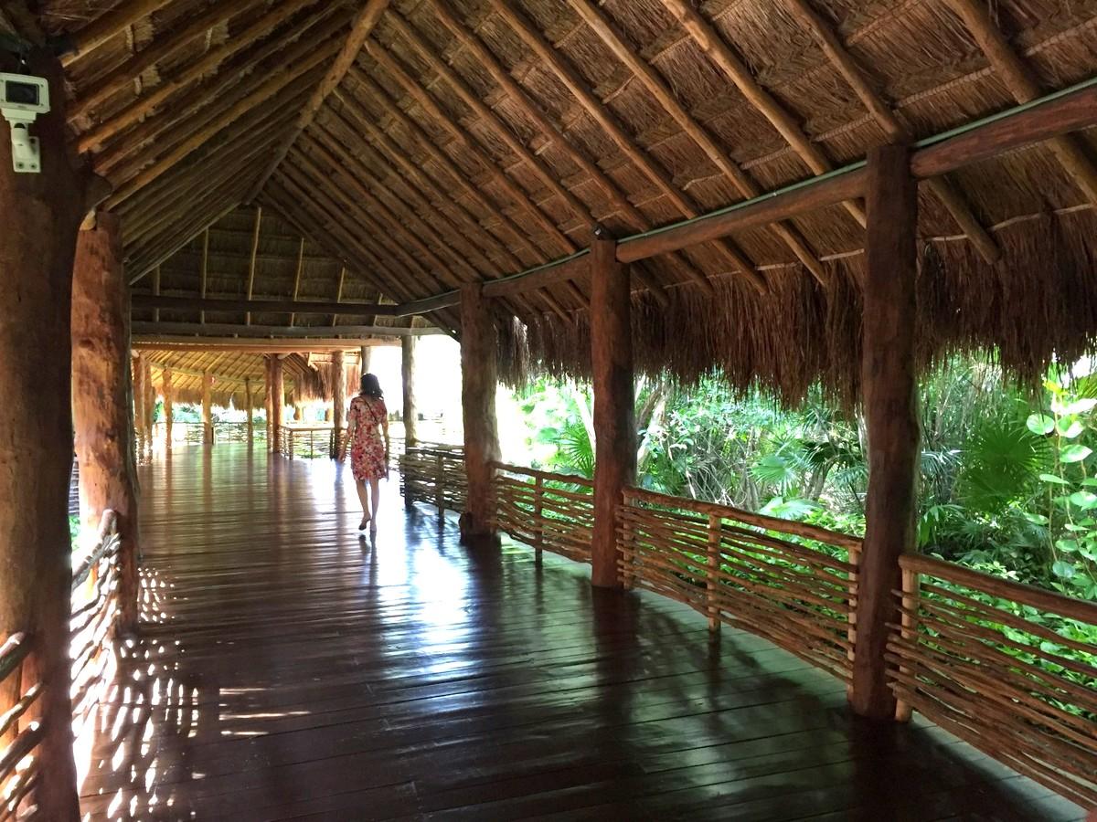 Mexiko   Entspannung und Kultur an der Riviera Maya strand sonne land und leute reisebericht mexiko  TUI Berlin Mexico Grandvelas im Dschungel