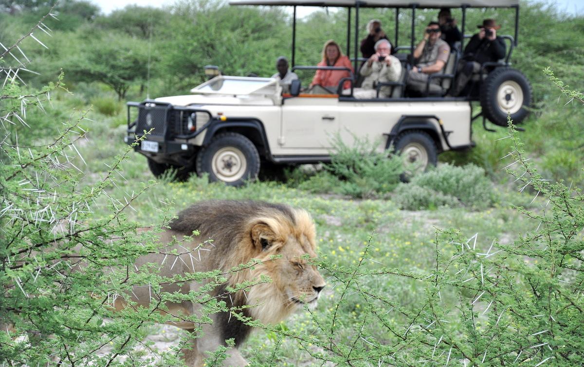 Botswana Safari und Victoriafälle: Unsere Afrika Rundreise sonne land und leute reisebericht botswana afrika  tui berlin botswana safari jeep 1