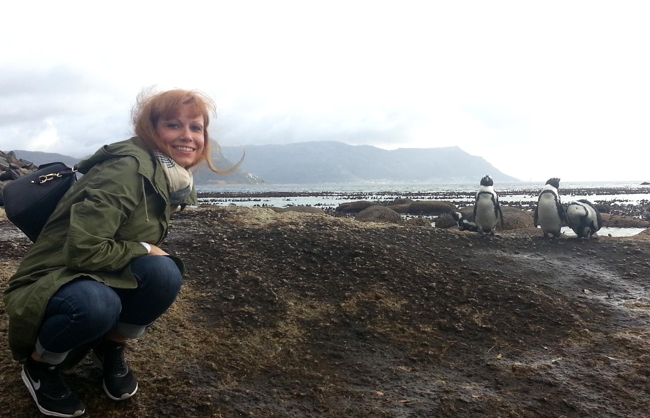 Südafrika entdecken: Kapstadt und die Kaphalbinsel suedafrika sonne safari land und leute reisebericht  TUI Berlin Reisebuero Südafrika Reisebericht Boulders Beach 1