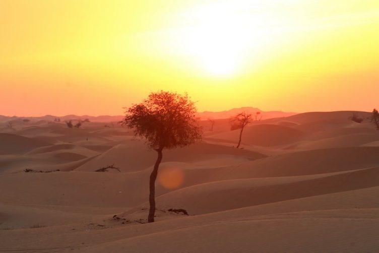 TUI, Reisebüro, World of TUI, Berlin, Abu Dhabi, Wüste, Erlebnisreise, Tom Kohler, Reisebericht, Reiseblog, Erlebnisbericht, Sibylle Georgi