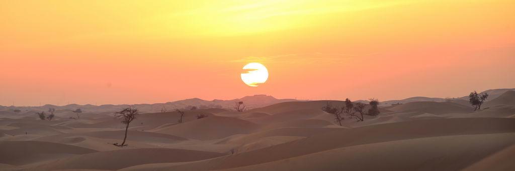 Einzigartige Wüstenerlebnisse strand staedtereisen sonne land und leute reisebericht abu dhabi  tui berlin wüste abu dhabi dünen sonnenuntergang