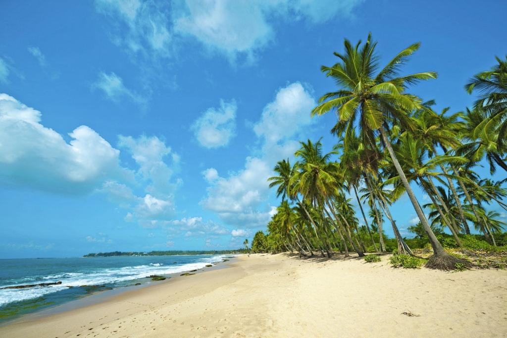 RIU goes Asia!   Neueröffnung in Sri Lanka news tui hotels strand sri lanka asien sonne familie cluburlaub  tui berlin riu sri lanka strand