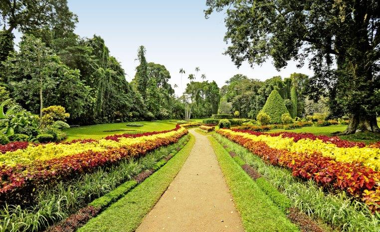 TUI Fernreisen   Trendreiseziel Sri Lanka tui hotels strand sonne land und leute indischer ozean orient expertentipps angesagte reiseziele angebote und specials  tui berlin sri lanka botanischer garten