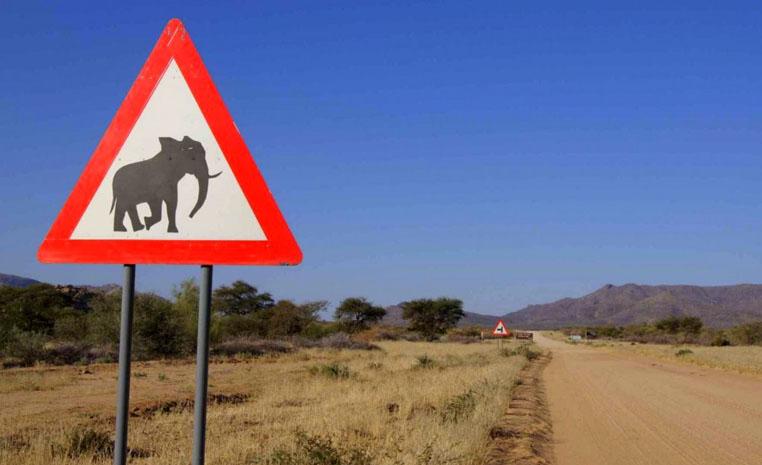 TUI Berlin, TUI, Reisebüro, Reisen, Rundreise, Safari, nachhaltig Reisen, nachhaltiges, Reiseberatung, Afrika, Öko, Namibia, Abenteuer, Selbstfahrer, Mietwagen