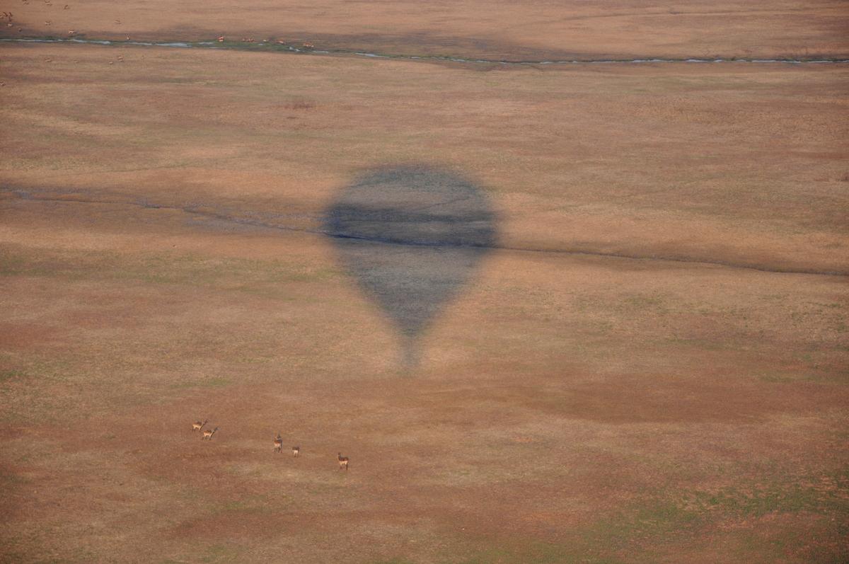 tui-berlin-afrika-heissluftballonfahrt-kafue