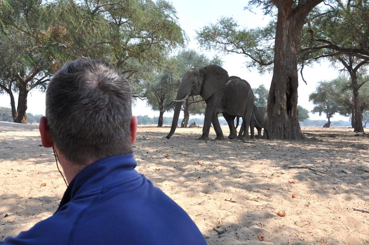 Zwischen Sambia und Simbabwe   mit dem Kanu unterwegs auf dem Sambesi sonne simbabwe safari reisebericht afrika  TUI Berlin Reisebüro Paddeltour Sambesi Mittagspause