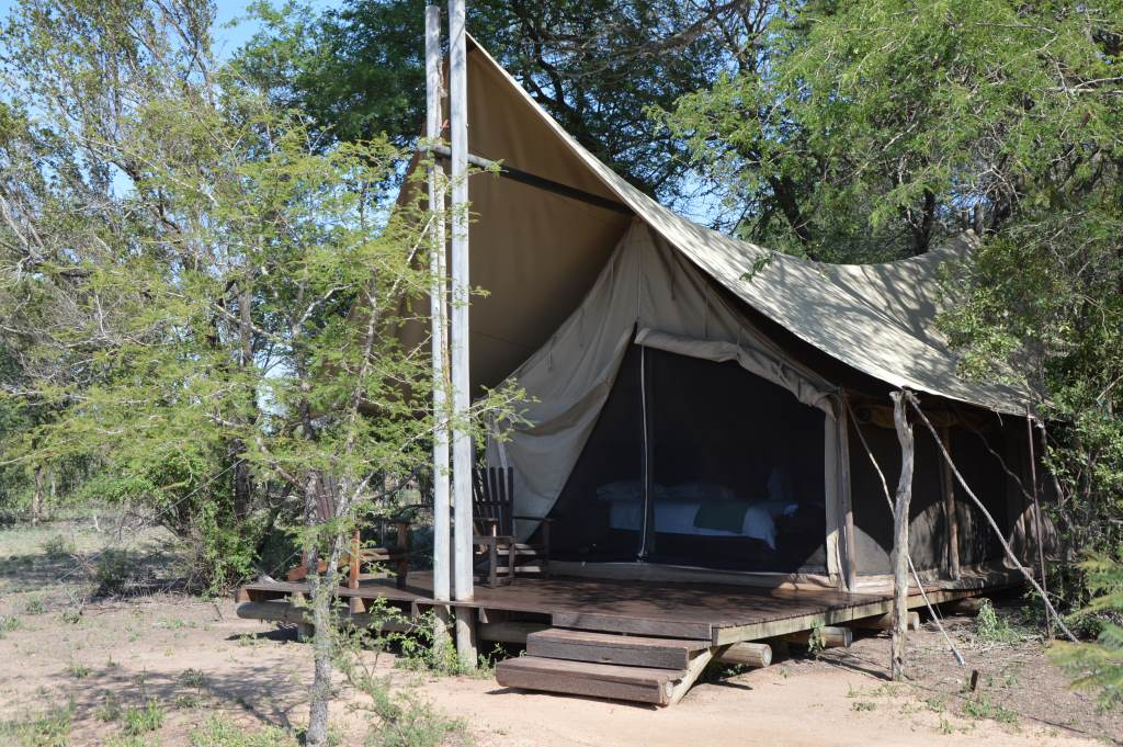 Erlebnisse im Krüger Nationalpark   Rhino Post Safari Lodge und Plains Camp uncategorized suedafrika sonne safari reisebericht new afrika  tui berlin plains camp zelt