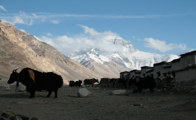 goXplore Abenteuerreisen: Trekking Touren am Ende der Welt land und leute expertentipps asien  tui berlin reisebuero Nepal trekking8