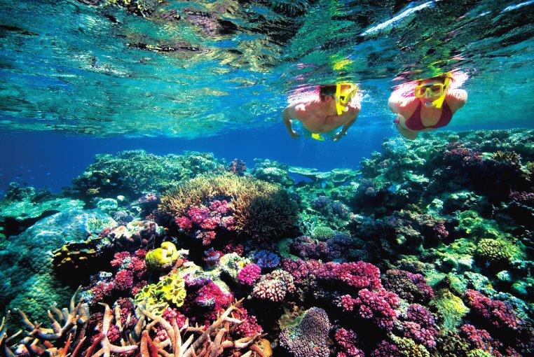 Once in a Lifetime   Einmalige Erlebnisreisen uganda news tui hotels thailand strand sonne seychellen oman angesagte reiseziele angebote und specials angebot afrika  tui berlin great barrier reef
