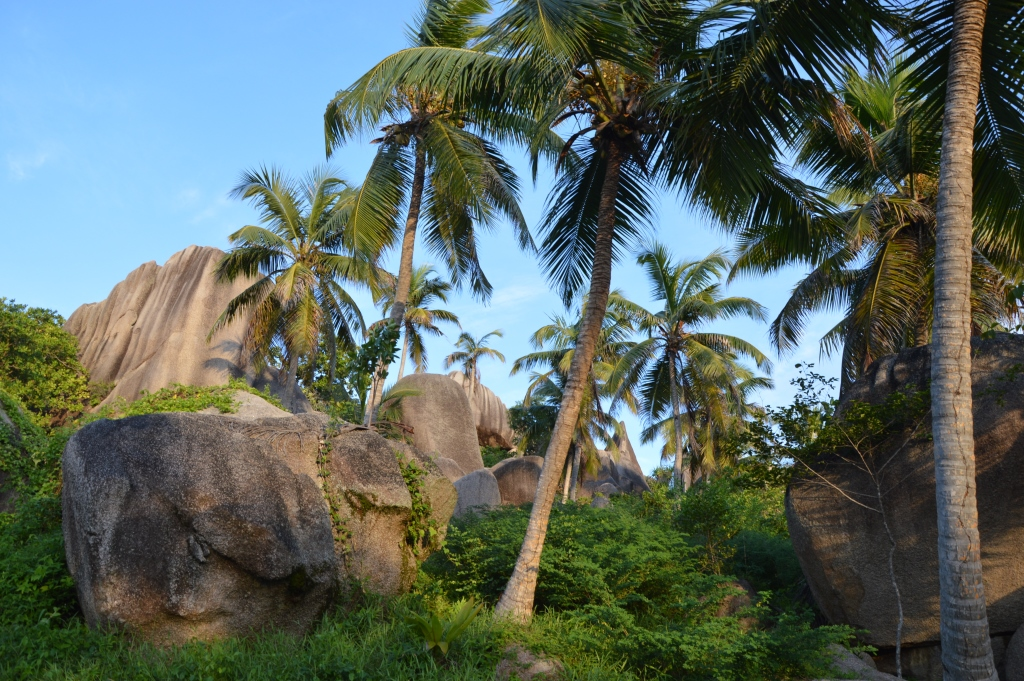 Six Senses Zil Pasyon: Pool Villen mit Ausblick auf den Indischen Ozean strand sonne seychellen new honeymoon 2  tui reisebuero berlin seychellen six senses wald 1
