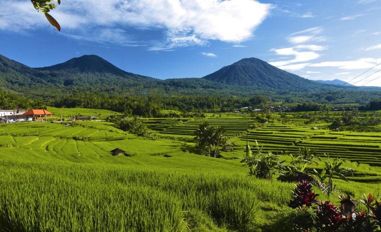 Bali zum Greifen nah strand sonne land und leute indonesien expertentipps  tui berlin reisterassen bali copyright