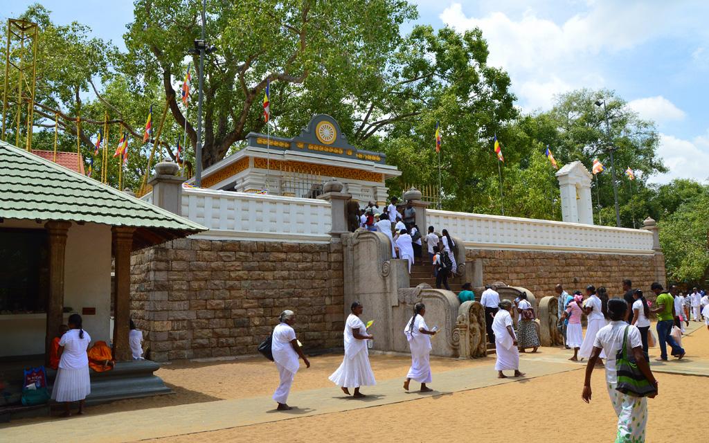 Unterwegs durch Sri Lanka   Luxuriös mit airtours strand sri lanka asien sri lanka sonne land und leute reisebericht new  TUI Reisebuero Berlin Sri Lanka Anuradhapura Pilger