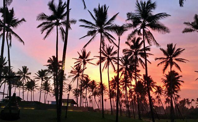 TUI Berlin, Reisebuero, Sebastian Heinrich, Sri Lanka, airtours, Rundreise, Luxushotels, Resorts, Weligama, Tangalle, Hambantota, Tee, Galle, Colombo