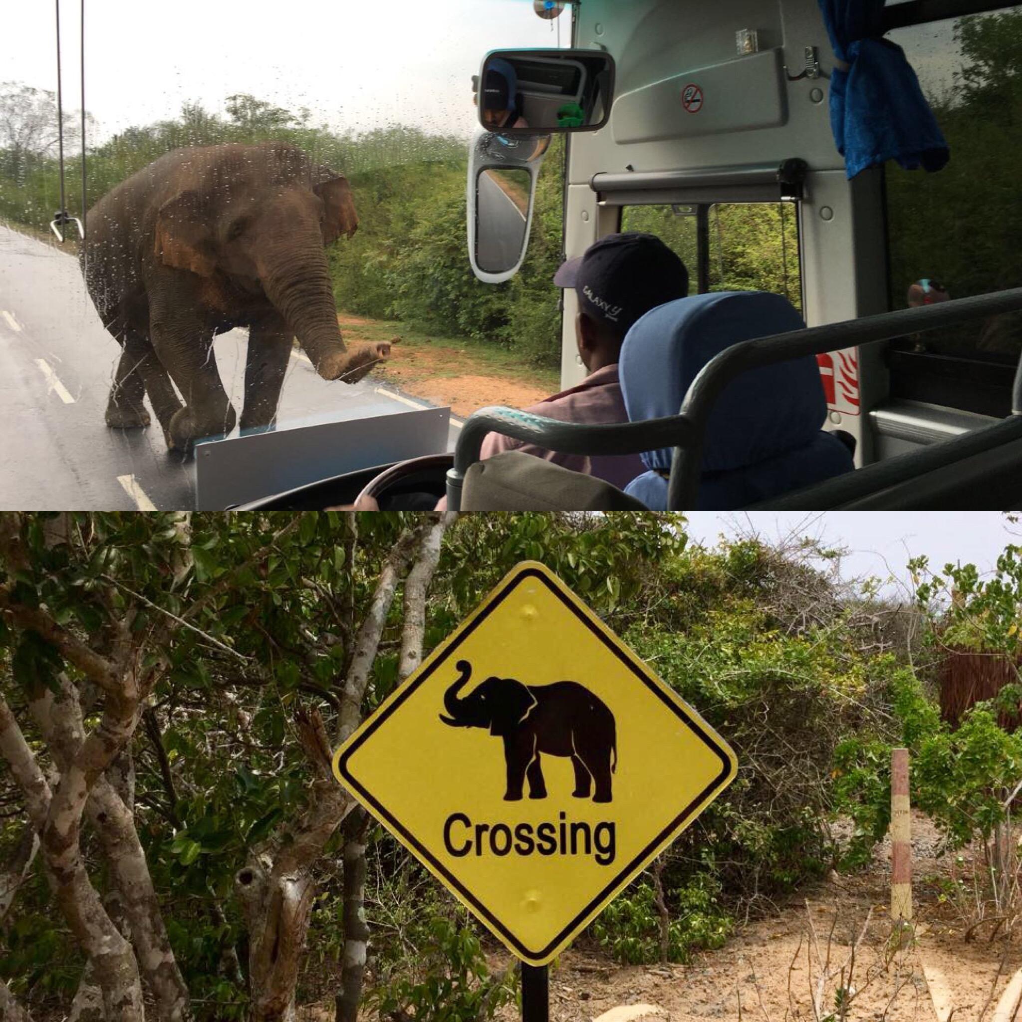 Unterwegs durch Sri Lanka   Luxuriös mit airtours strand sri lanka asien sri lanka sonne land und leute reisebericht new