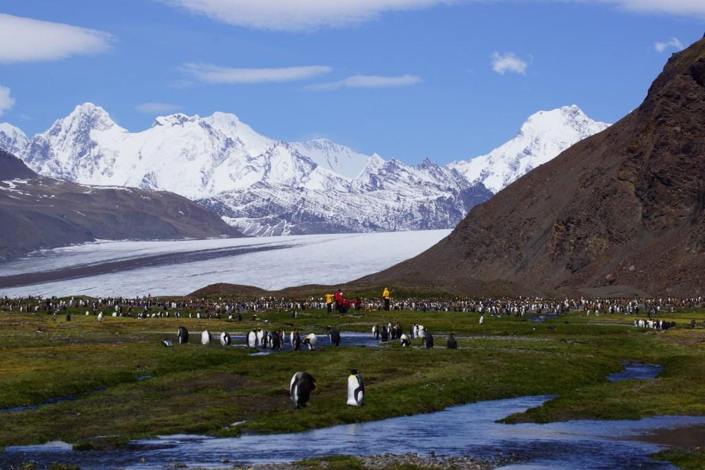 Mit der Hanseatic auf Expeditionskreuzfahrt durch die Antarktis reisebericht new kreuzfahrt  Antarktis2