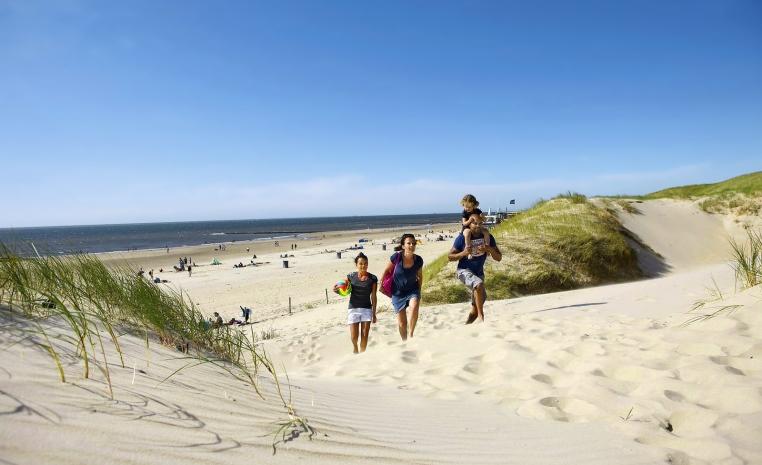 Urlaub auf vier Pfoten   hundefreundliche Hotels tui hotels strand sonne oesterreich niederlande expertentipps deutschland angebote und specials  tui berlin ferienpark landal beach resort strand