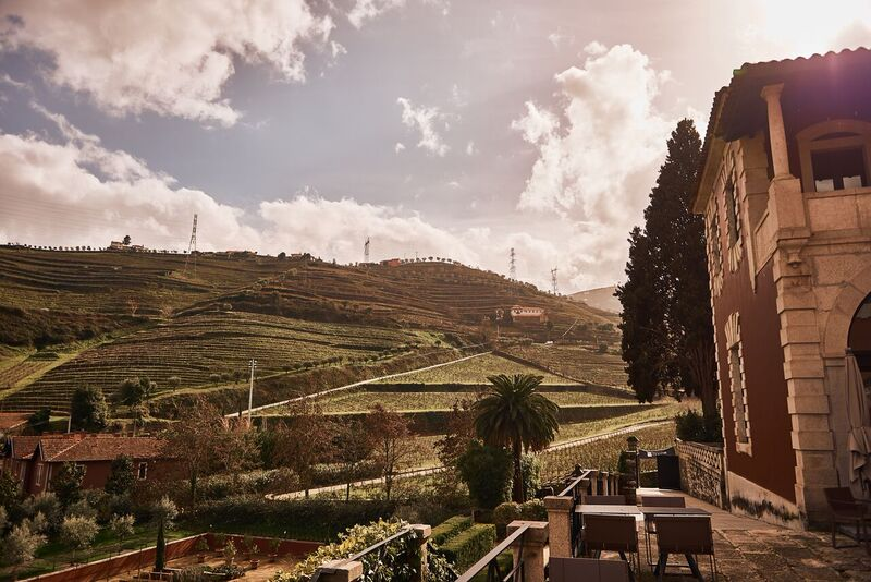 Six Senses Douro Valley Blick in die Weinberge - World of TUI Berlin Reisebericht
