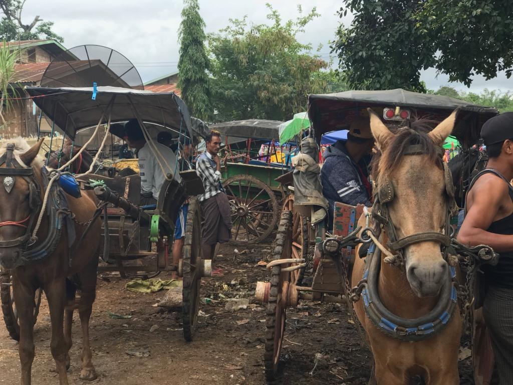 Myanmar   Meine Rundreise in sieben Tagen sonne land und leute reisebericht new myanmar  tui berlin myanmar markt