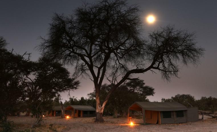 Afrika   Einfach mal anders tui hotels strand sonne simbabwe namibia kenia botswana angebote und specials angebot  tui berlin afrika rundreise botswana zeltsafari