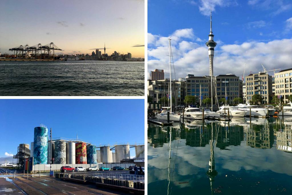 TUI, Reisebüro, Berlin, Neuseeland, Experte, Nordinsel, Auckland, Hafen, Skyline, Abend, Fernsehturm