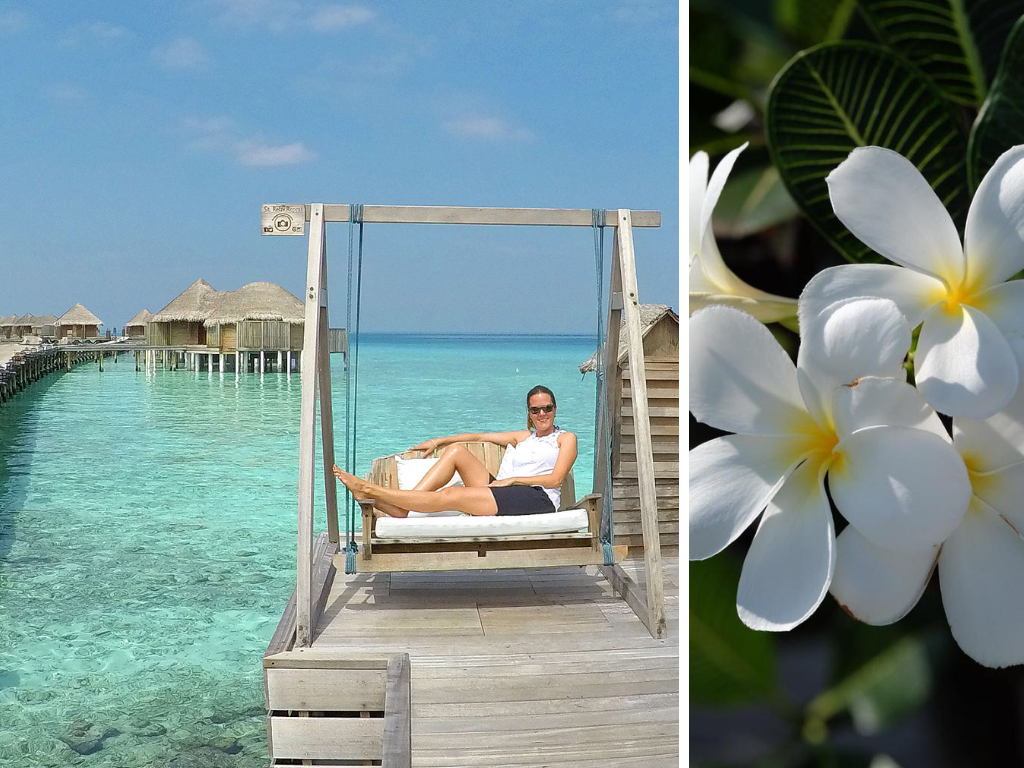 Malediven   Constance Hotels and Resorts strand reisebericht new malediven  Constance Halaveli Katharina