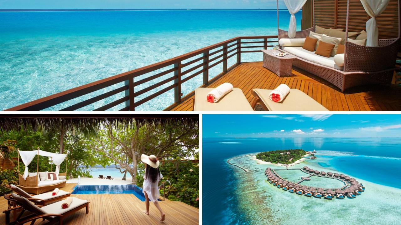 Trauminseln der Malediven: Universal Resorts tui airtours hoteltipps strand sonne malediven indischer ozean orient honeymoon 2 angebot  tui berlin baros maldives canva