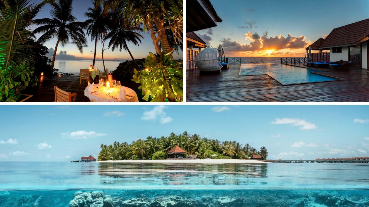 TUI SMILE Deals +++ Jetzt 100€ p. P. sparen! tui hotels strand sonne malediven griechenland balearen angebote und specials angebot  tui berlin robinson maldives canva