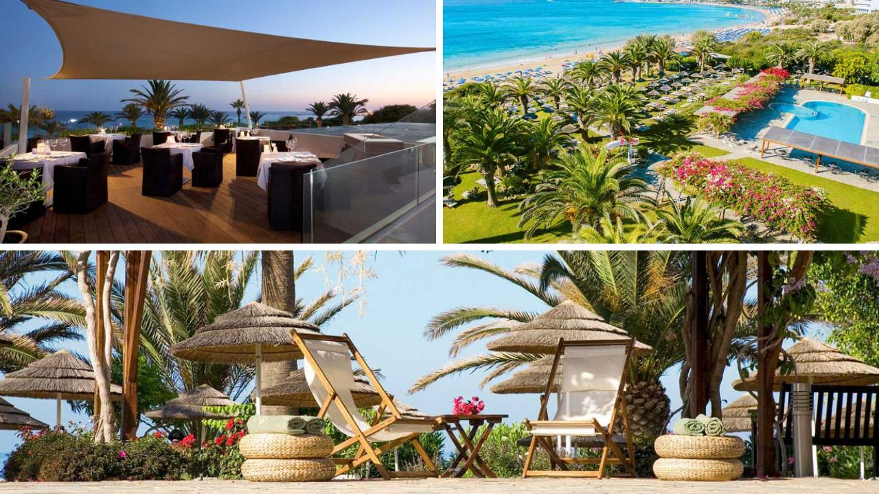 Insel der Götter: Zypern entdecken mit TUI zypern tui hotels strand sonne angesagte reiseziele angebote und specials angebot airtours hotels  tui berlin zypern alion beach hotel canva