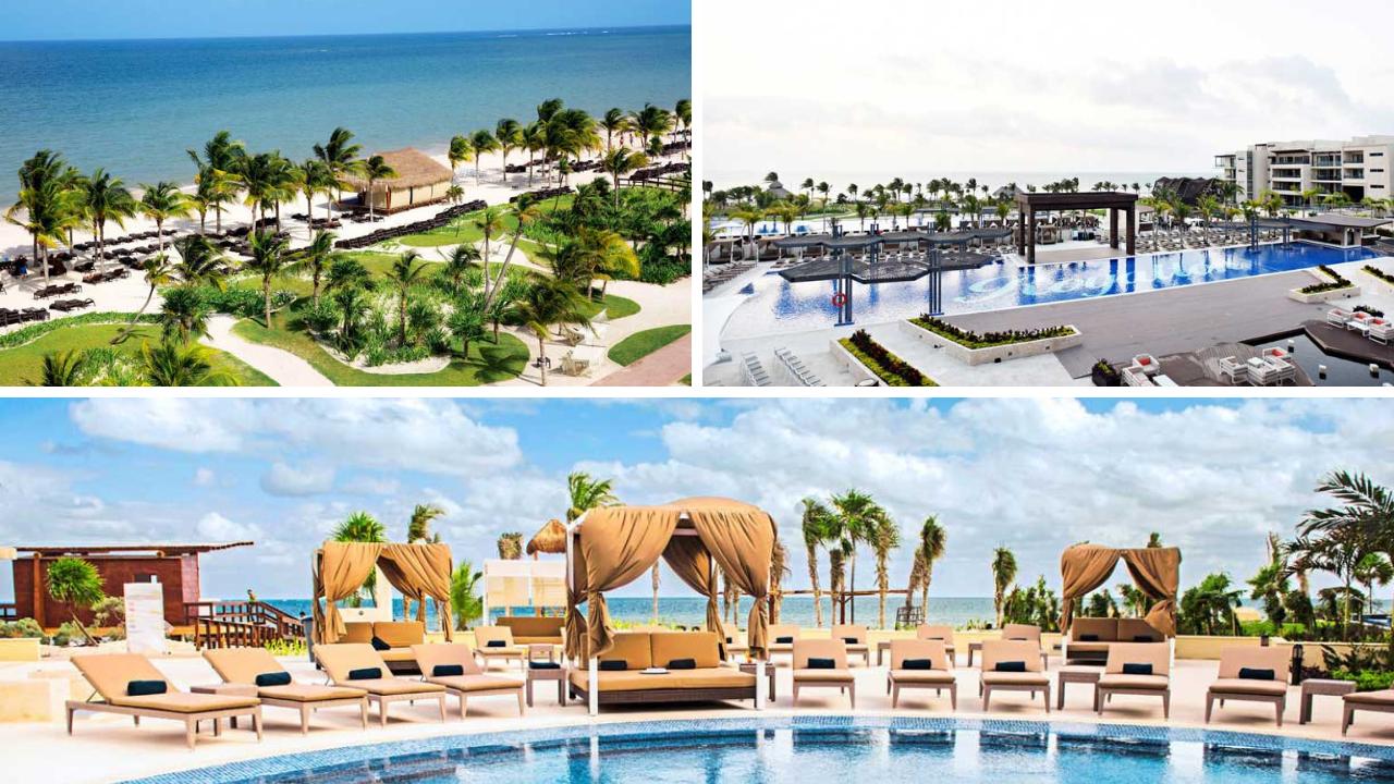 Winter Special bei TUI   Jetzt 50€ sparen tui hotels strand angebote und specials angebot  tui berlin royalton riviera cancun canva
